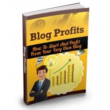 Blog Profits Guide