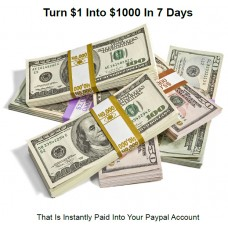 learn how to turn $1 into $1,0