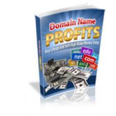 Domain Name Profits