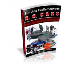 Fun And Excitement With RC Cars
