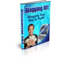 bloggin101